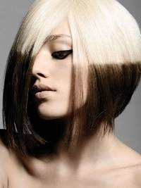 Blonde and Black Hair Color Ideas