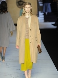 Rochas Fall 2013 Collection