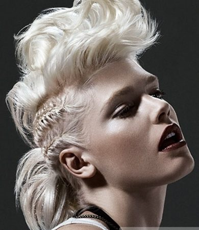 Punk Braided Hair Style