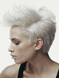 Stylish and Versatile Short Hairstyles