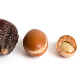 Argan Fruits