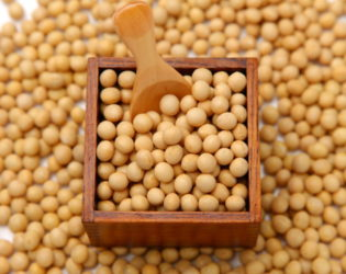 Soy For An Alkaline Diet