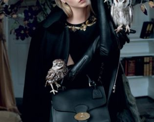 Look From Mulberry's Fall 2013 Ad Campaign