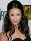 Abigail Spencer Teased Half Updo