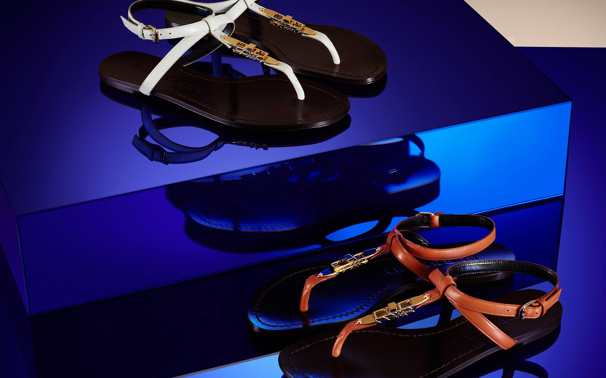 Burberry Accessories Fall Winter 2013 (2)