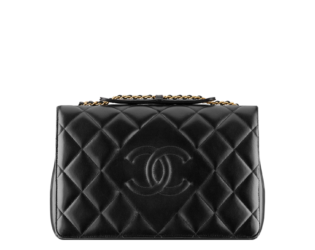 Chanel Bags Pre Collection Fw 2013 (4)