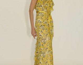 Maxi Dress From Zac Zac Posen's Spring 2014 Collection