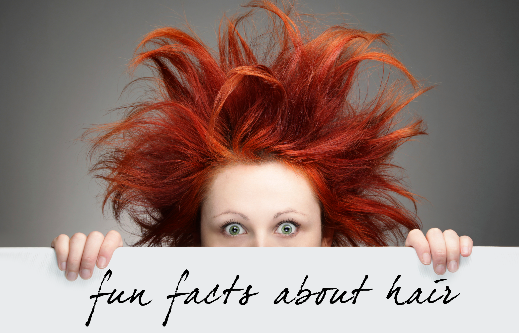Fun Facts About Hair