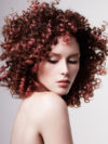 Modern Curly Afro For Women