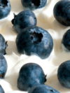 Blueberries And Yoghurt