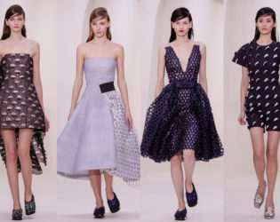 Christian Dior Spring 2014 Couture Collection Set  (5)