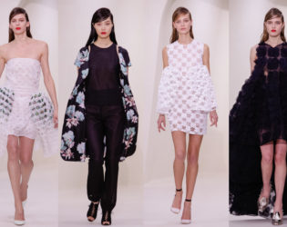 Christian Dior Spring 2014 Couture Collection Set  (7)