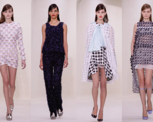 Christian Dior Spring 2014 Couture Collection Set  (8)