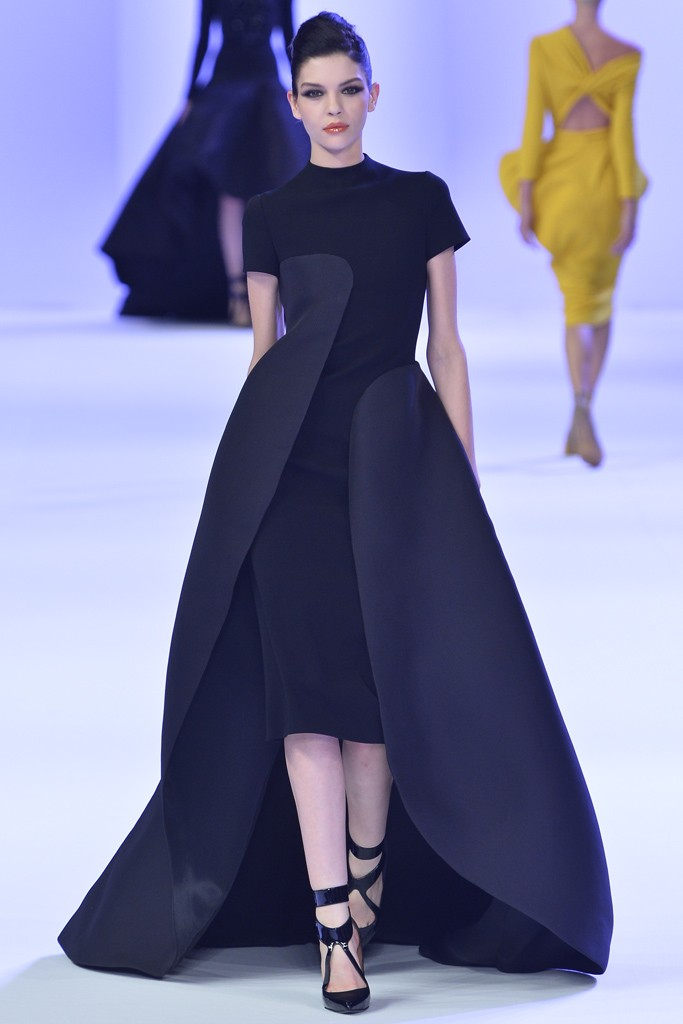 Stéphane Rolland Couture Spring 2014 Look  (8)