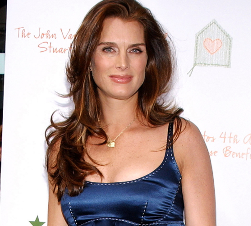 Brooke Shields Pregnant After 40