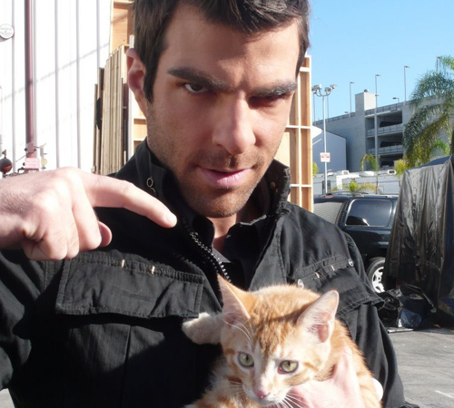 Zachary Quinto Cat Lover